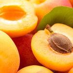 albicocche-prodotti-op-agorà-organizzazione-produttori-agricoli-metaponto-matera-basilicata