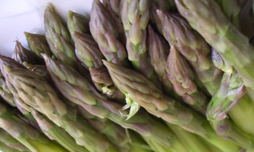 asparagi-op-agorà-organizzazione-produttori-agricoli-metaponto-matera-basilicata