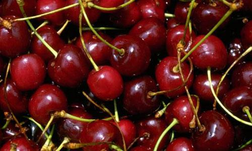 ciliegie-op-agorà-organizzazione-produttori-agricoli-metaponto-matera-basilicata